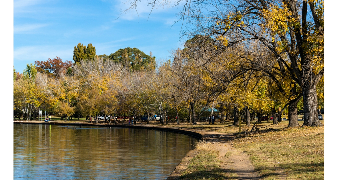 canberra-pet-friendly-dog-walks