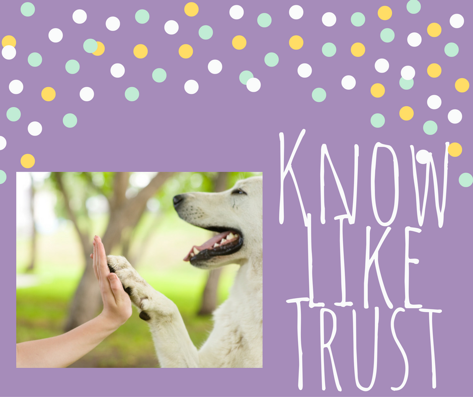 know like trust petboarding